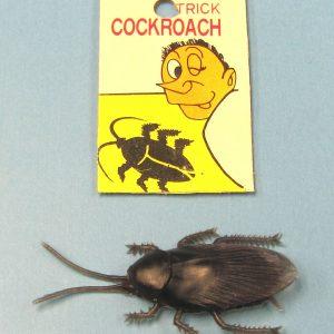 Cockroach Joke