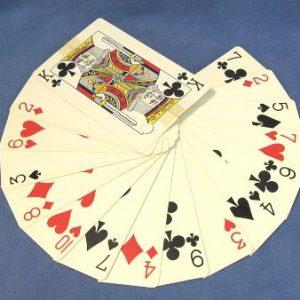 Super Fan Jumbo Cards (Aladdin Magic Corp.)