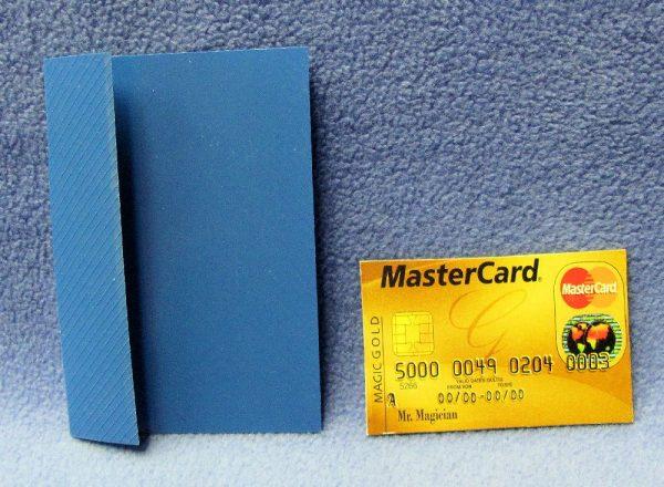 Credit Card Thru Bill