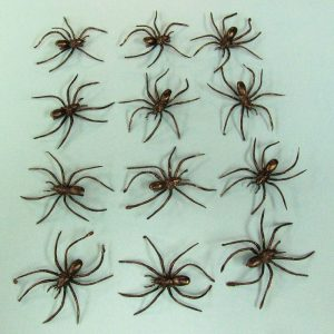 Spiders with Clips (Dozen)
