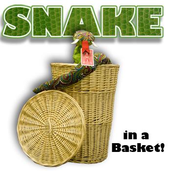 Snake Basket Remote Control