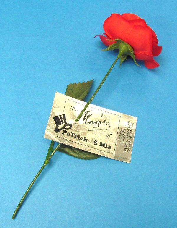 Petrick and Mia Business Card on Rose