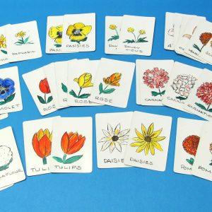 Fox Lake Flower Cards
