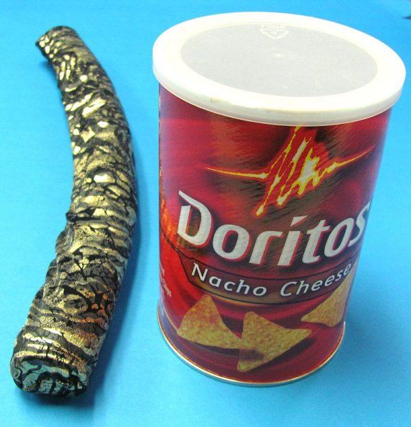 Doritos Snake Can