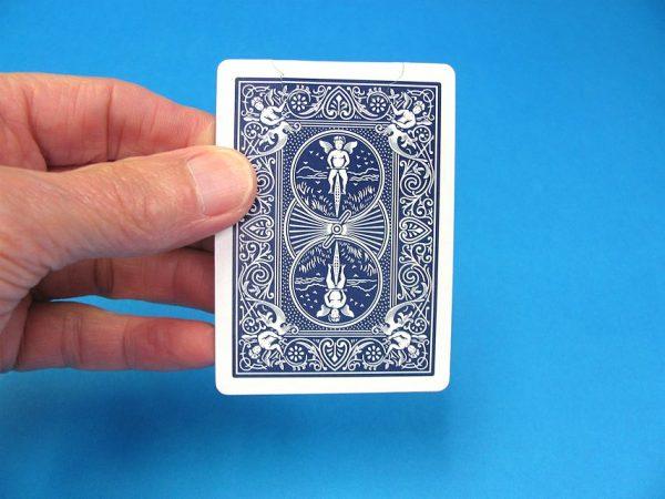 Biting Through A Card-2