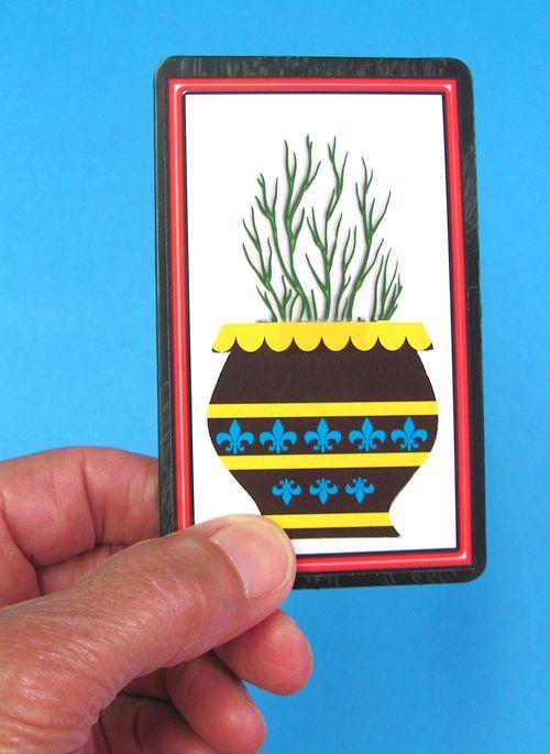 Pocket Flowering Bush-1